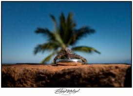 Fotografía de bodas Puerto Vallarta_03